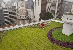 Telhado verde no Centro do Rio: arma contra calor e enchentes Foto: Márcia Foletto / Márcia Foletto