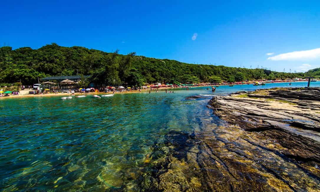 Praia da Tartaruga está liberada para banhistas Foto: Marte Oliveira / Divulgação