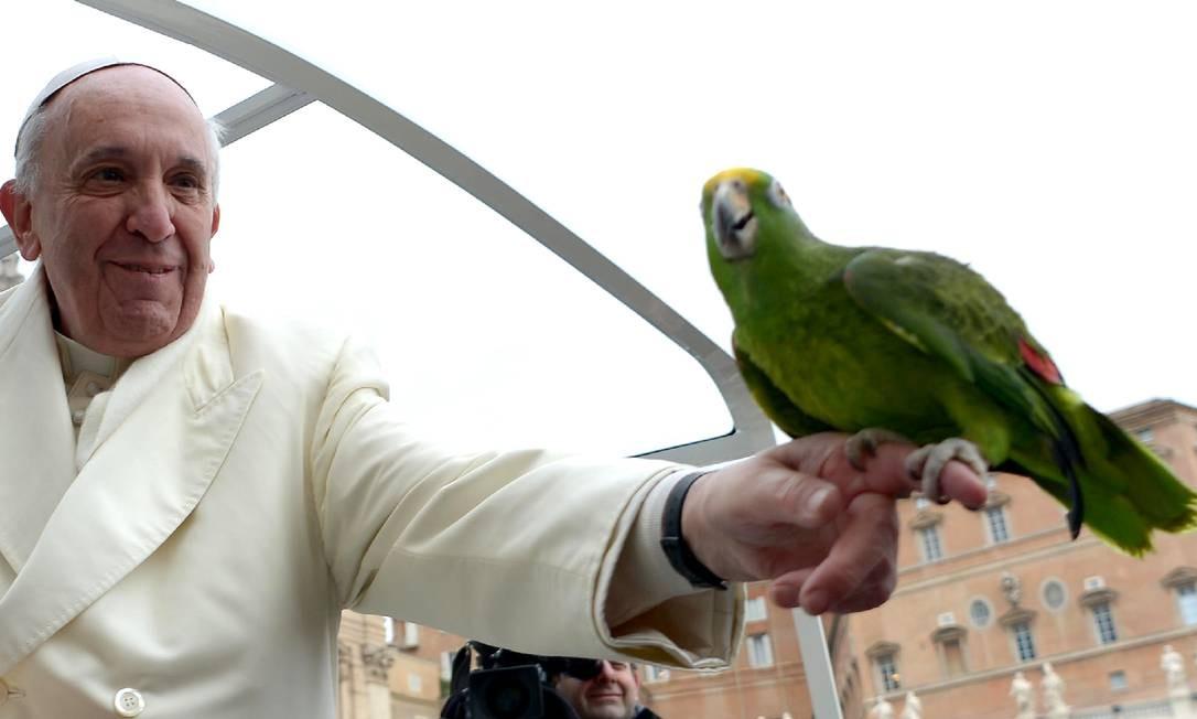 Francisco segura o papagaio de um peregrino na Praça de São Pedro Foto: AFP-29-1-2014