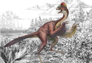"""'Anzu wyliei': dinossauro, apelidado de """"galinha do inferno"""", tem plumagem em seus membros dianteiros Foto: Mark Klingler / AP"""