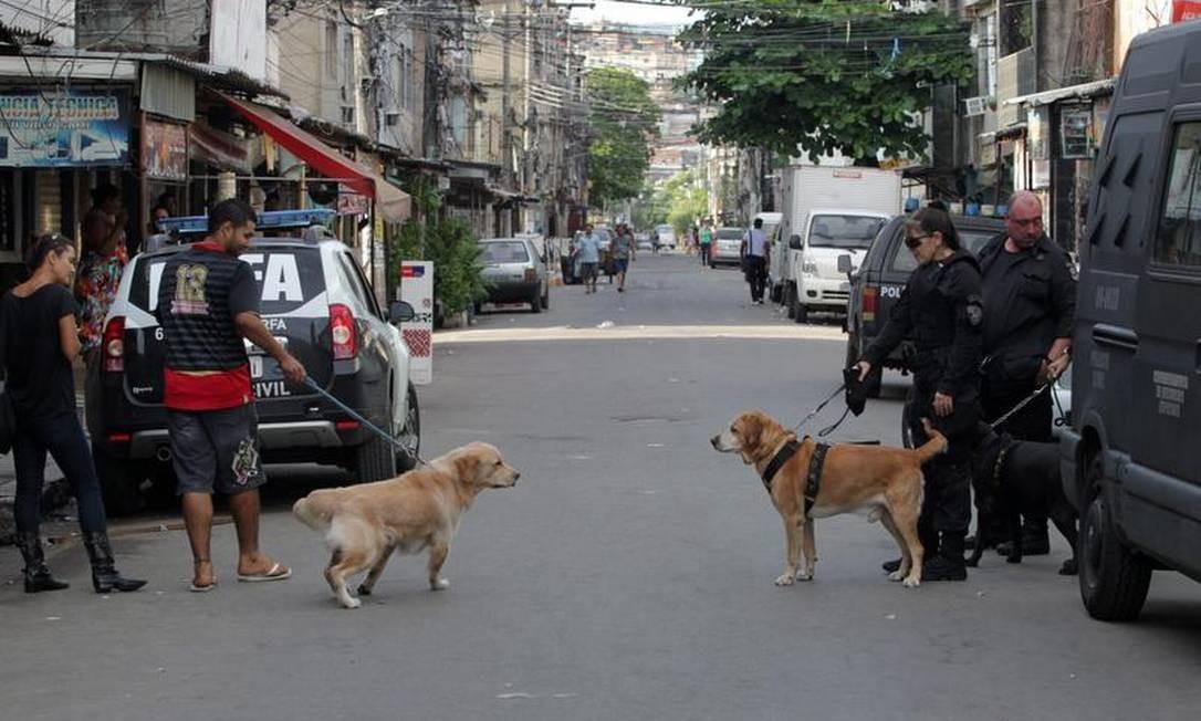 Cão da polícia observa cachorro que passa com morador da Maré Foto: Roberto Moreyra