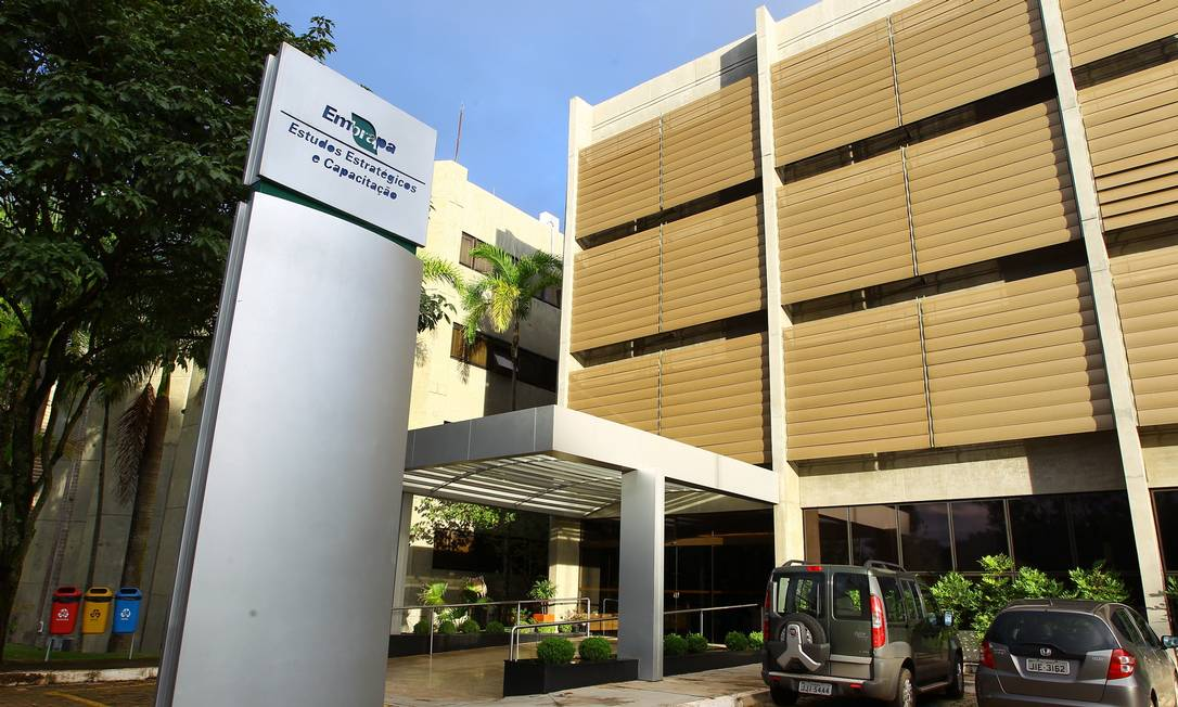 Instalações do Centro de Estudos e Capacitação em Agricultura Tropical (Cecat) Foto: André Coelho/Agência O Globo