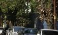 Susto. O para-brisa do carro de Théo (à esquerda) foi atingido em cheio por um fruto de abricó-de-macaco. Ao longo da Rua Visconde de Caravelas, há cerca de 40 árvores do tipo
