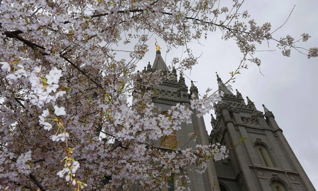 Em Salt Lake City, no estado americano de Utah, as cerejeiras embelezam a fachada da Igreja de Jesus Cristo dos Santos dos Últimos Dias na semana em que milhares de mórmons de todo o mudno se reuniram para participar de uma conferência na cidade GEORGE FREY / AFP