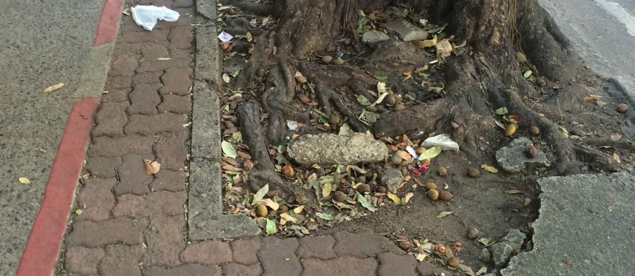Calçada perto de ciclovia destruída por raiz de árvore na Rua Visconde Silva, em Botafogo Foto: Foto do leitor Carlos Lopes / Eu-Repórter
