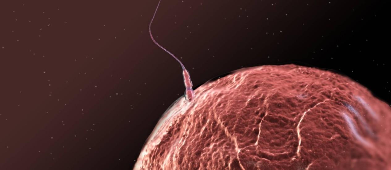 Ilustração mostra um espermatozoide tentando fertilizar um óvulo: proteínas na superfície das duas células interagem para permitir que processo siga em frente Foto: Science Photo Library