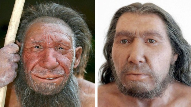 Reconstituição do rosto de um Neandertal Foto: Divulgação