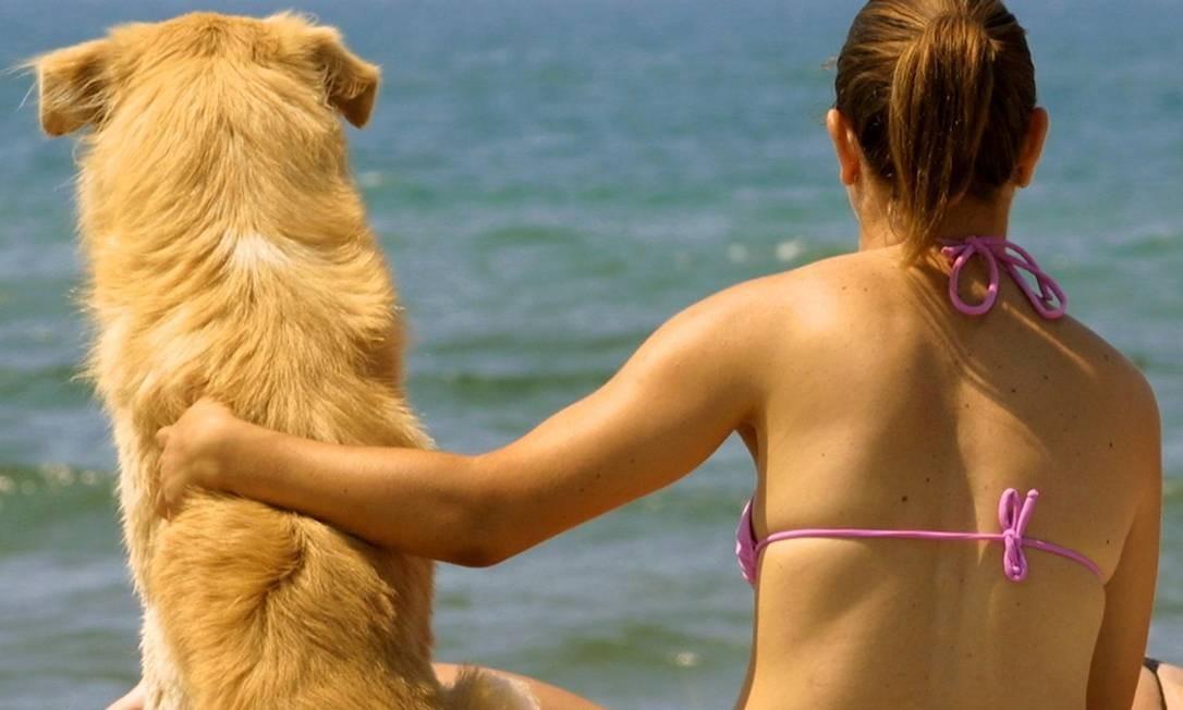 Vínculo. Animais liberam o mesmo ' hormônio do amor ' encontrado em humanos, revela pesquisa Foto: Alessia Pierdomenico