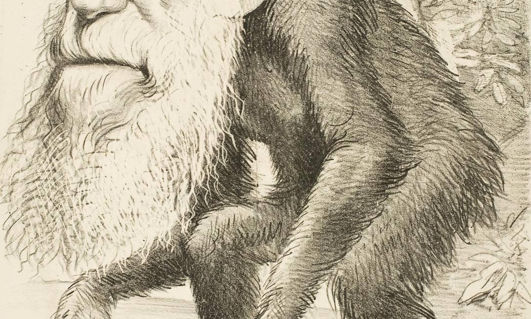 Charge mostra o rosto de Charles Darwin em corpo de macaco Foto: / Reprodução