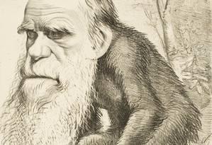 Charge mostra o rosto de Charles Darwin em corpo de macaco Foto: Reprodução
