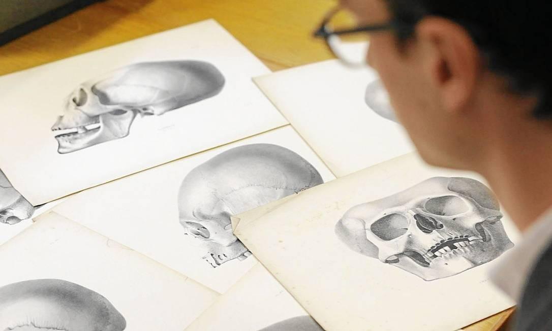 """O historiador James Poskett, da Universidade de Cambridge, analisa os desenhos de """"Crania americana"""", livro de Samuel George Norton Foto: Divulgação"""
