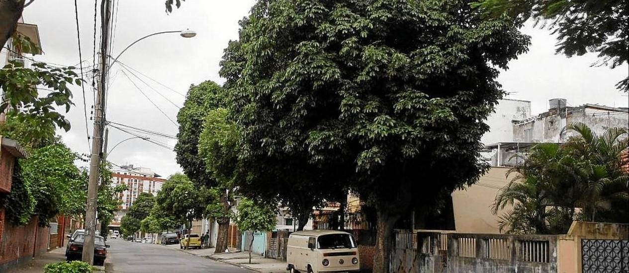 Breu e morcegos. No detalhe, uma das árvores frondosas que estão precisando de poda na Rua Aimoré Foto: Eduardo Naddar