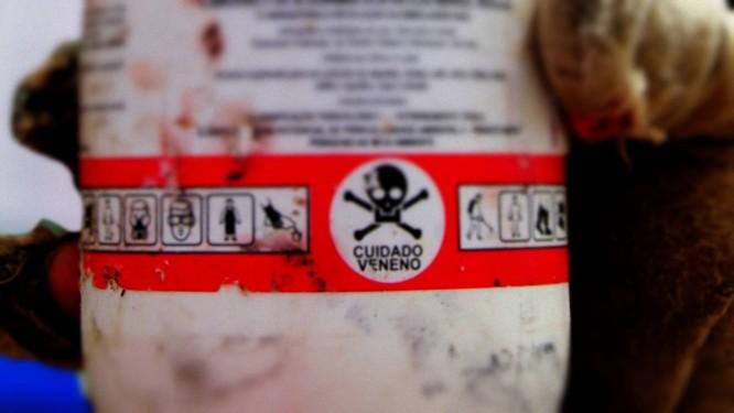 """Agrotóxicos na mira: para Silvio Tendler, mesa do consumidor está """"ainda mais envenenada"""" Foto: Divulgação"""