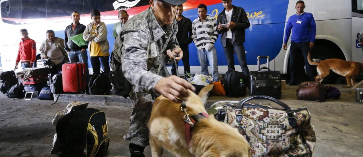 PM faz treinamento com cães na Rodoviária Novo Rio Foto: Guito Moreto / Agência O Globo