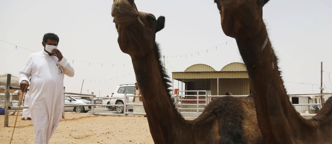 Homem com máscara caminha entre camelos na Arábia Saudita Foto: FAISAL AL NASSER/REUTERS