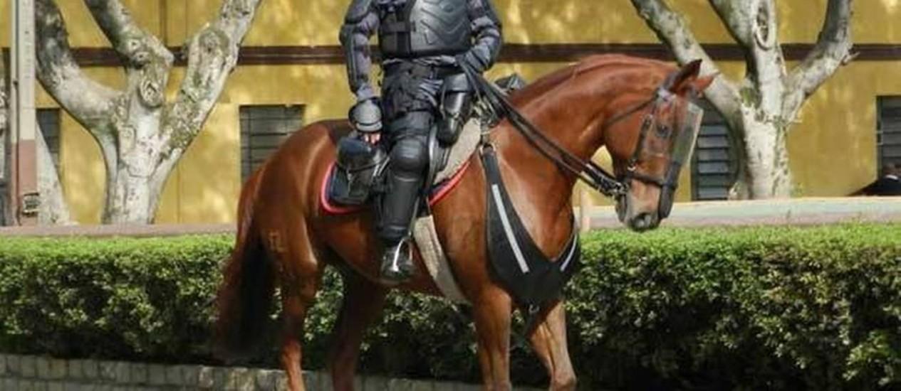 Tropa de Choque reforça proteção para cavalaria durante a Copa em SP Foto: Divulgação