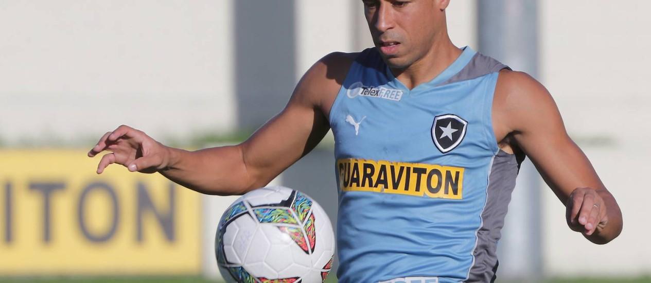 Jorge Wagner marcou três gols com a camisa do Botafogo na temporada Foto: Marcelo Theobald / Agência O Globo