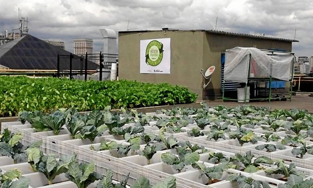 Feijoada . Couve quase pronta para a colheita no telhado-horta do shopping paulista que investe em compostagem e reciclagem Foto: Divulgação