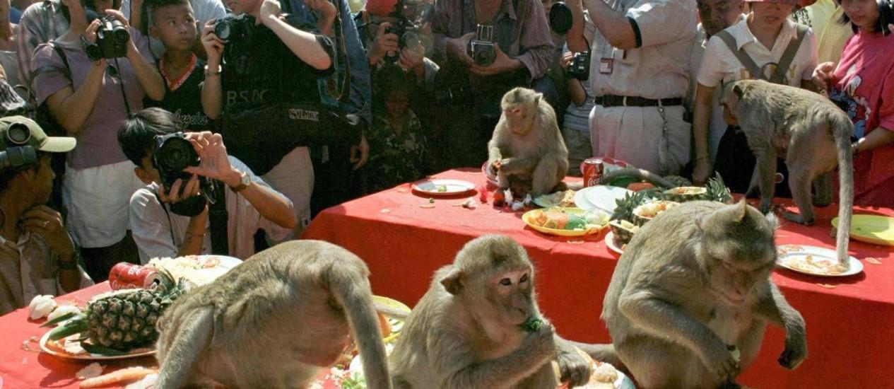 Macacos aproveitam uma refeição enquanto são fotografados por turistas Foto: REUTERS-30-11-1997