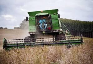 Colheita no Paraná: governo quer elevar a produção de biodiesel para aliviar o déficit na 'conta petróleo' Foto: Guito Moreto / O Globo