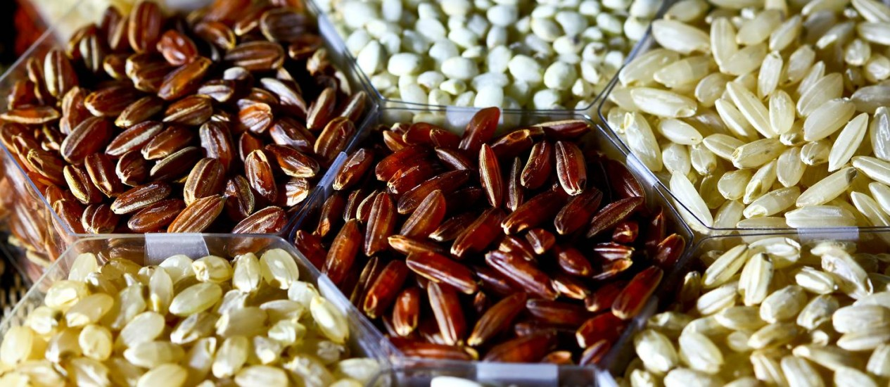 Grãos revelam apenas uma pequena proporção das diferenças de traços entre as mais de 40 mil variedades de arroz existentes no mundo, das quais 3 mil tiveram seus genomas completos tornados públicos nesta quarta Foto: Isagani Serrano/IRRI
