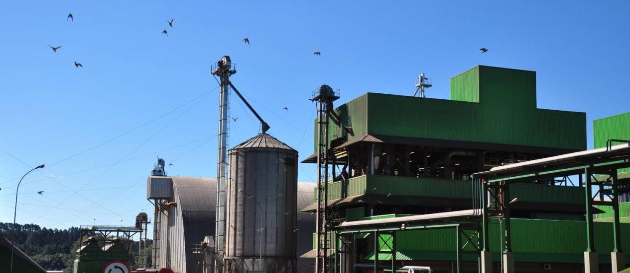 Usina de biodiesel em São Paulo Foto: Divulgação
