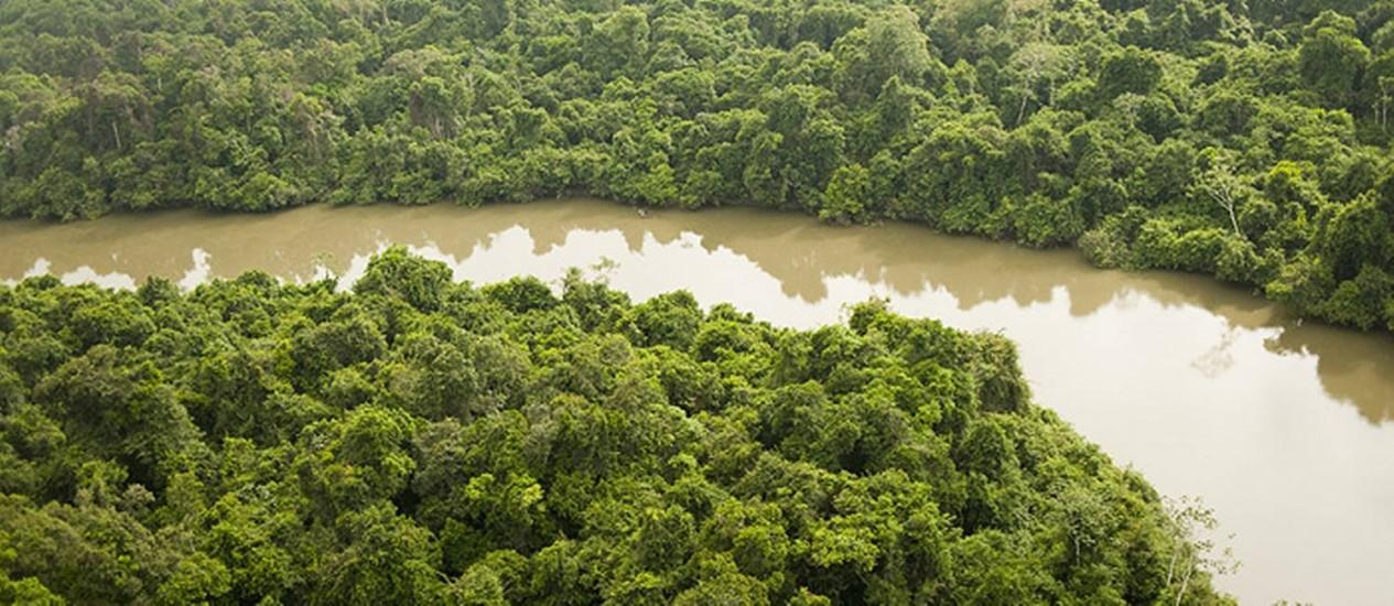 São Félix do Xingu tem 84 mil quilômetros quadrados de área, sendo 73% formado de florestas Foto: Divulgação/TNV/Haroldo Palo Jr.