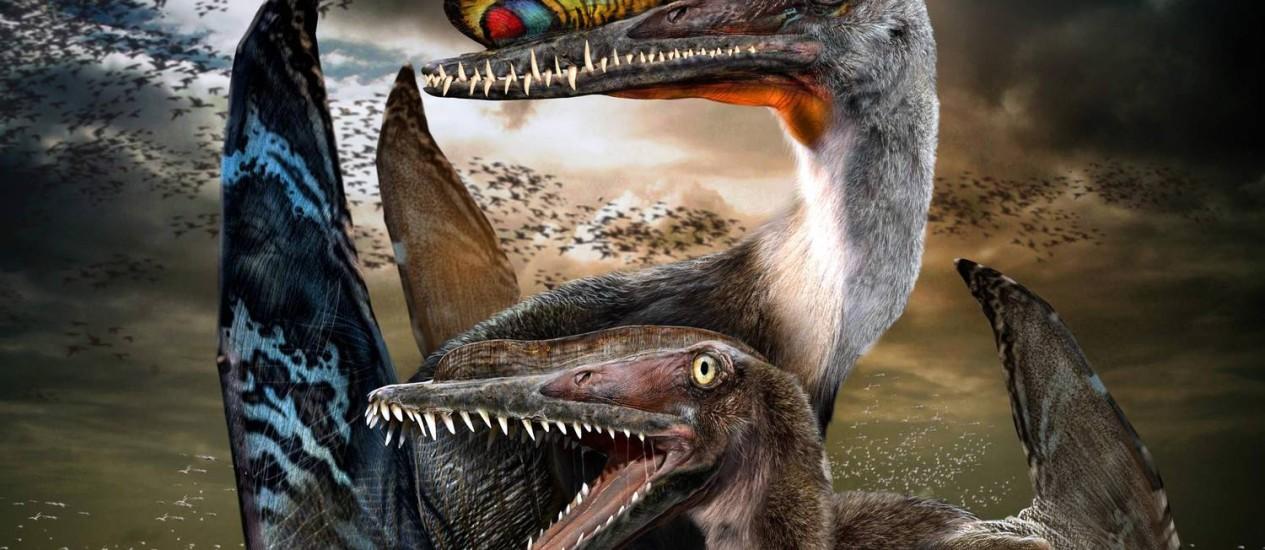 Ilustração mostra como eram os pterossauros, que viveram há cerca de 120 milhões de anos Foto: Chuang Zhao / REUTERS