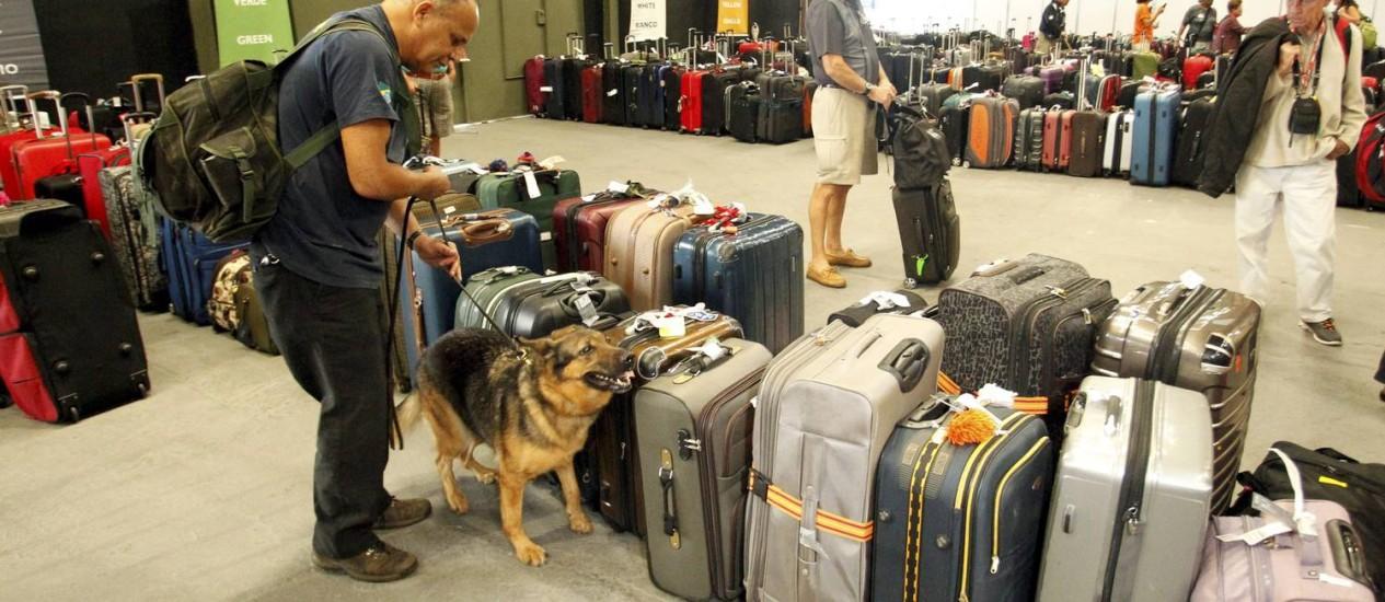 Um cão fareja as bagagens durante o desembarque no píer Foto: Gabriel de Paiva / Agência O Globo