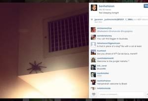 O atacante da seleção australiana Ben Halloran encontrou uma aranha no quarto onde ficou hospedado em Vitória e postou em seu Instagram: 'Não vou domir esta noite' Foto: Reprodução