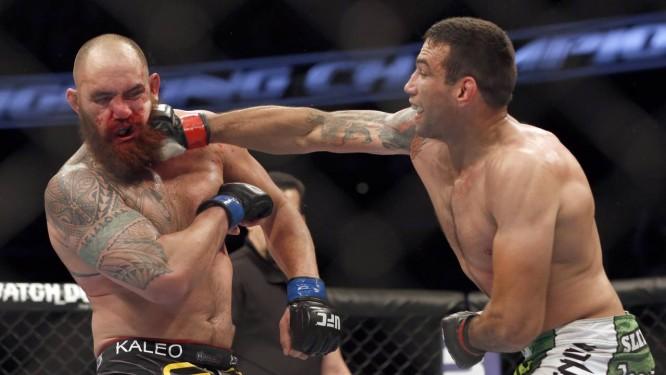 Fabricio Werdum soca Travis Browne no UFC. Brigas ao longo de milhões de anos pode ter moldado rosto moderno Foto: Reinhold Matay / AP