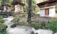 Barulho de água corrente reforça a aura sagrada do Ninho do Tigre