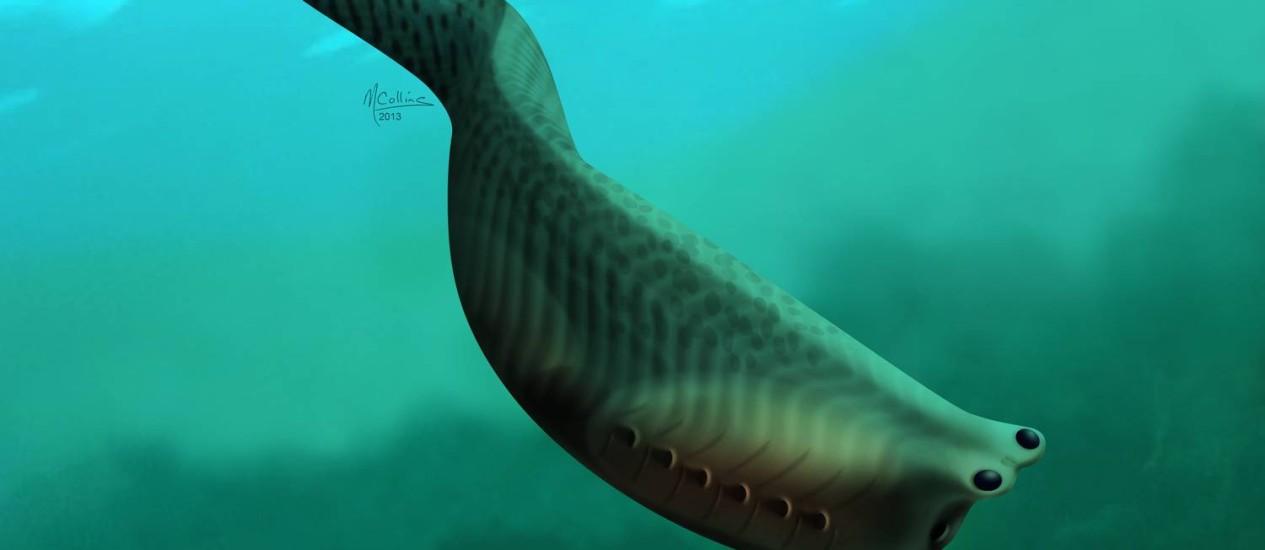 Ilustração mostra como era a possível aparência dos Metaspriggina, peixes primitivos que viveram há mais de 500 milhões de anos e de cujas estruturas os cientistas acreditam que as mandíbulas dos vertebrados evoluíram Foto: Marianne Collins