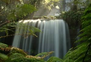 Cachoeira em área de proteção na Floresta da Tasmânia Foto: Eduardo Vessoni/24-10-2012