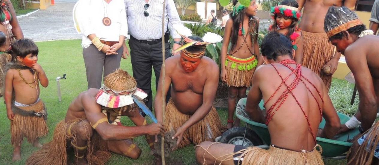Índios Pataxó fizeram o plantio das primeiras mudas do projeto Gol Verde Foto: Divulgação / Hilda Rodrigues