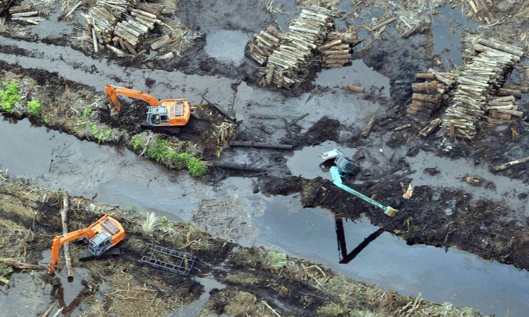 Retroescavadeiras na ilha de Sumatra, na Indonésia: intervenção humana no meio ambiente expõe ainda mais um país já vulnerável a extremos climáticos Foto: / ROMEO GACAD/AFP