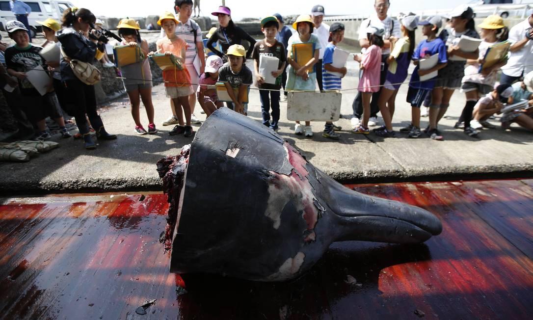 Estudantes obseravam carcaça de animal Foto: ISSEI KATO / REUTERS