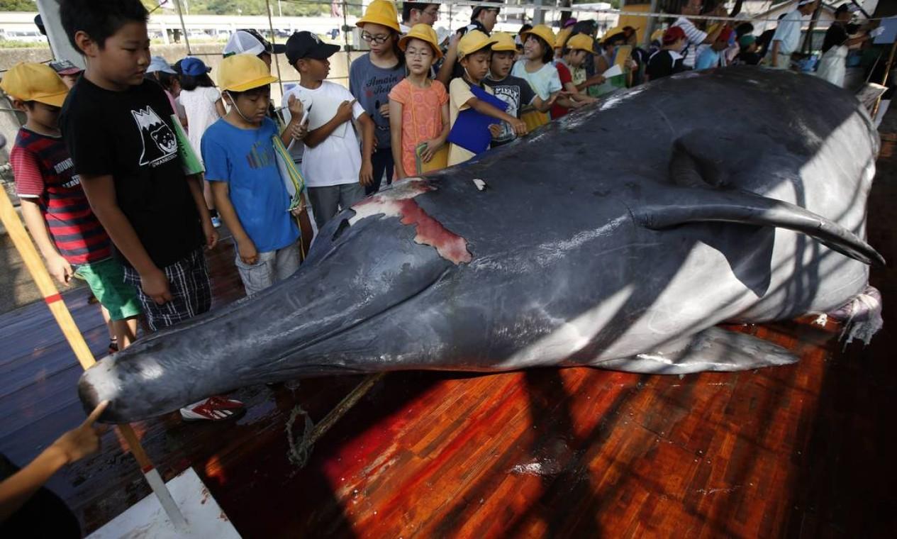 Trabalhadores da vila de Wada, em Minamiboso, no Japão, exibiram carcaças de baleias capturadas a estudantes da educação infantil e moradores, nesta quinta-feira Foto: ISSEI KATO / REUTERS