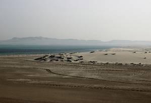 Os passeios pelo deserto no Qatar, a uma hora de Doha, são feitos em carros 4x4 com ar-condicionado Foto: Carla Lencastre / O Globo