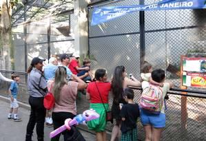 Risco. Uma segurança ignora duas crianças sentadas no guarda-corpo em frente à jaula do leão Foto: Agência O Globo / Marcos Tristão