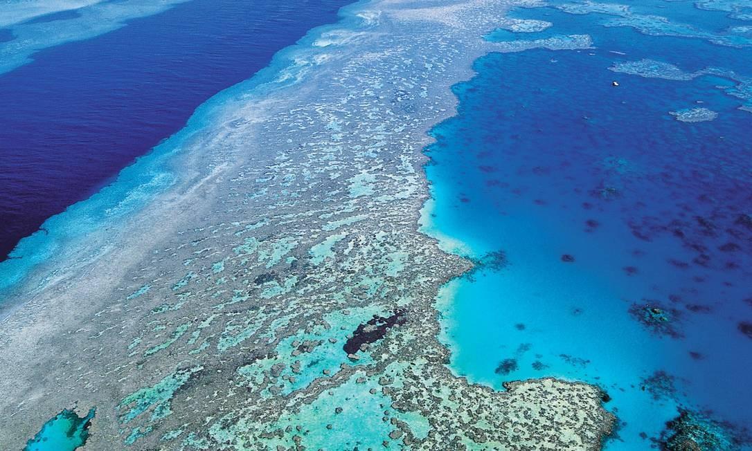 Maior estrutura de coral do mundo se estende por mais de 2.600 km ao longo da costa leste da Austrália Foto: / AP