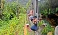 Vagão. Participantes do Beer Train, organizado pela cervejaria Bodebrown, na viagem entre Curitiba e Morretes