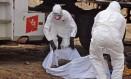 Voluntários carregam corpo de vítima suspeita de ebola em Monrovia, na Libéria Foto: Abbas Dulleh / AP