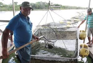 O rio virou lago, diz José Cornélio Santos, o Queléu, de 56 anos, presidente da colônia de pesca de Ilha das Flores. Foto: Michel Filho / O Globo