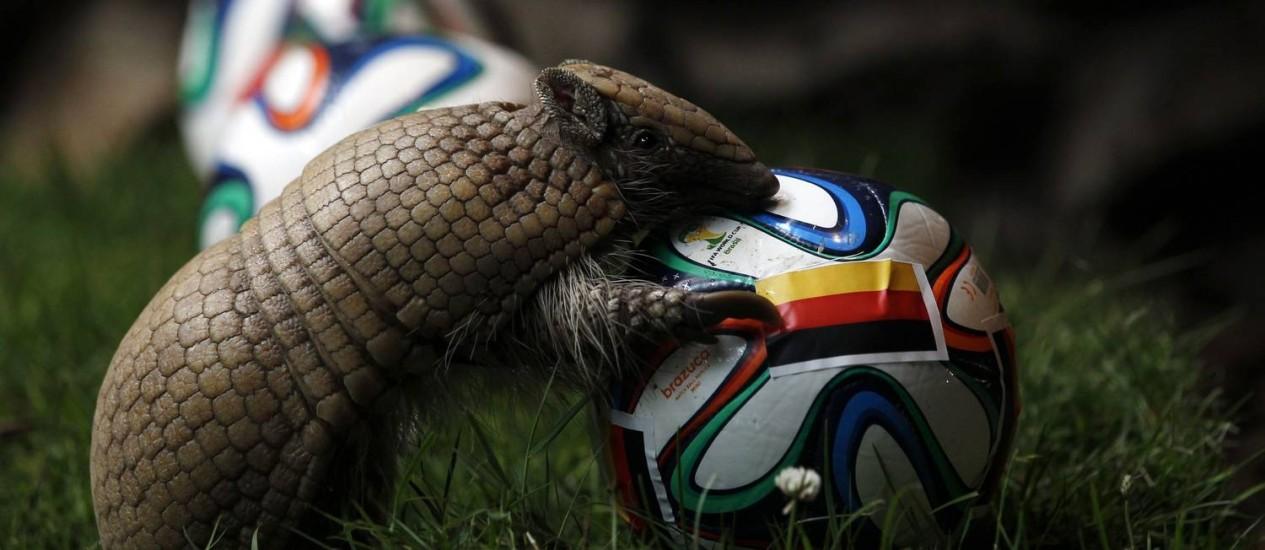 Tatu com a bola da Copa do Mundo. Foto: INA FASSBENDER / REUTERS