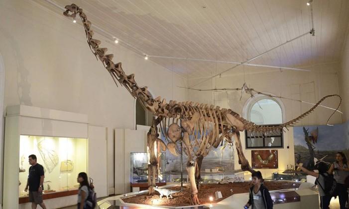 Museu Nacional acumula peças nas áreas de paleontologia, arqueologia e botânica, entre outras Foto: Alexandre Macieira / Divulgação / Prefeitura do Rio