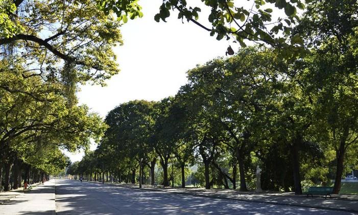 O Parque Quinta da Boa Vista é um ótimo lugar para a prática de atividades ao ar livre Foto: Divulgação / Prefeitura do Rio