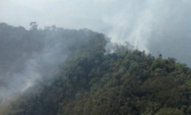 Incêndio atinge trecho da mata no Parque da Pedra Branca Foto: Inea / Divulgação