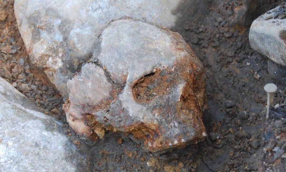 Crânio de mulher de tribo caçadora-coletora da Suécia de 8 mil anos atrás foi um dos que teve o genoma sequenciado pelos pesquisadores Foto: Fredrik Hallgren