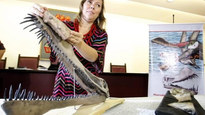 A professora Juliana Sayão apresenta o modelo tridimensional confeccionado da nova espécie de pterossauro Foto: Hans von Manteuffel